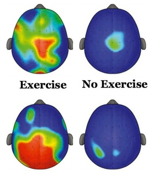 The Brain Science of Steppin'